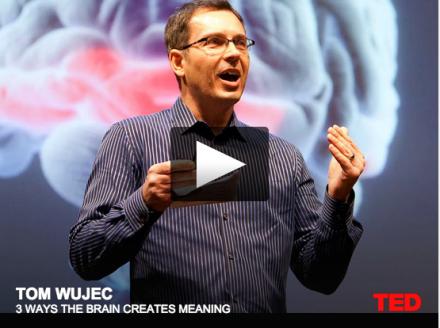 Video-Vrijdag: Hoe het brein betekenis geeft
