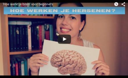 Video-Vrijdag: Hoe werkt je brein (voor beginners)