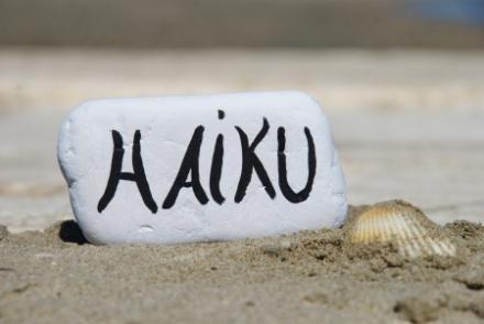 Heb je je workshop of training wel eens geëvalueerd aan de hand van een haiku? #trainerstips